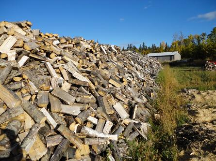 Stack of seasoned firewood Hythe Demmitt